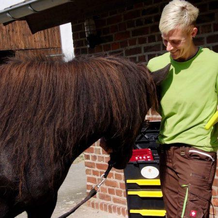 equi-feed.de Nadine Hausmann mobile Pferdewaage